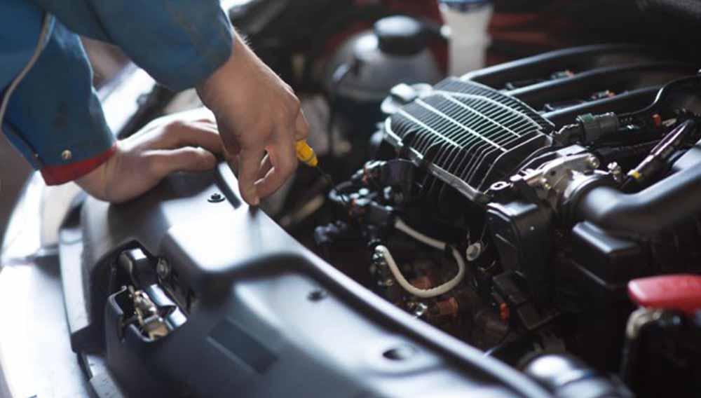 sandgate autoelectrics major servicing